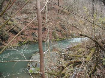 栗木ヶ淵の上流
