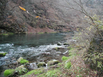 栗木ヶ淵の下流